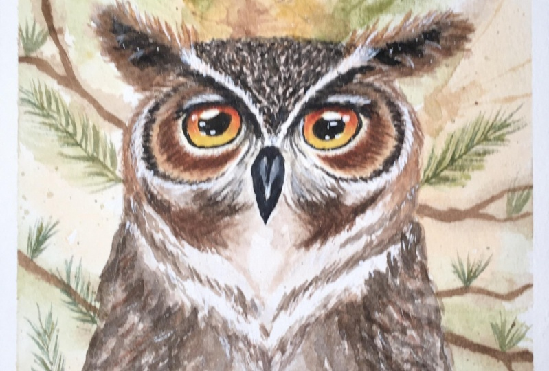 Paint loosely with watercolour - Great Horned Owl