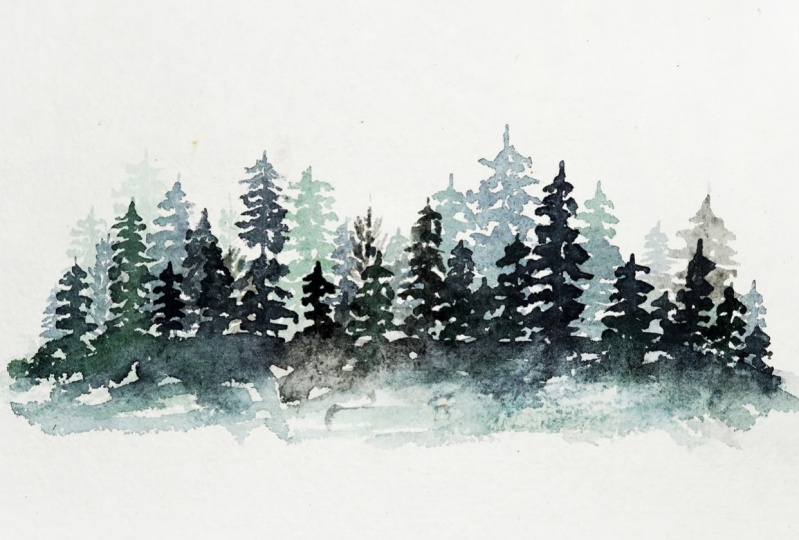 Watercolor Pine Forest