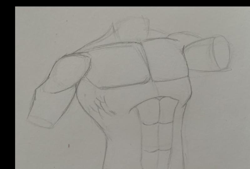 Torso Anatomy Project