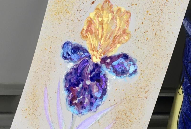 Shimmering Iris