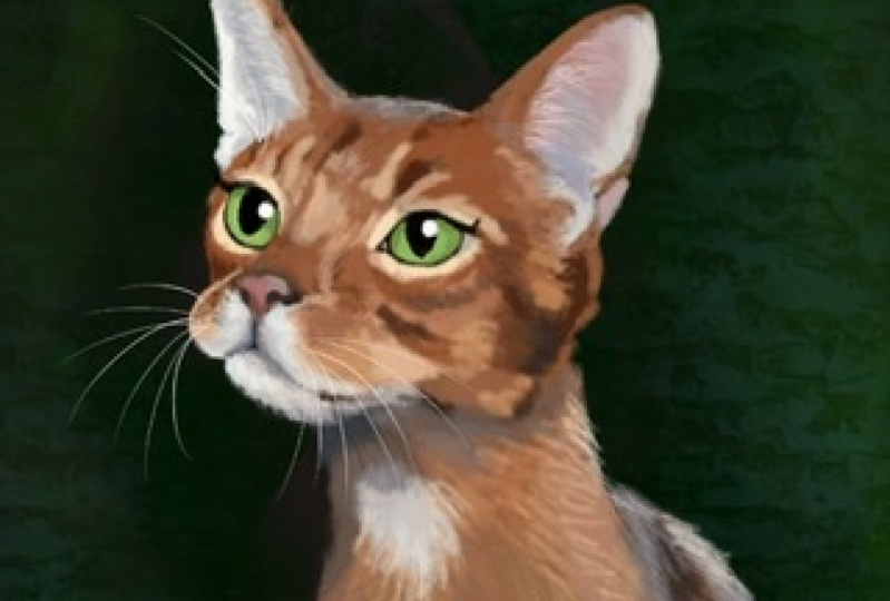 Cat portrait with Procreate 5X