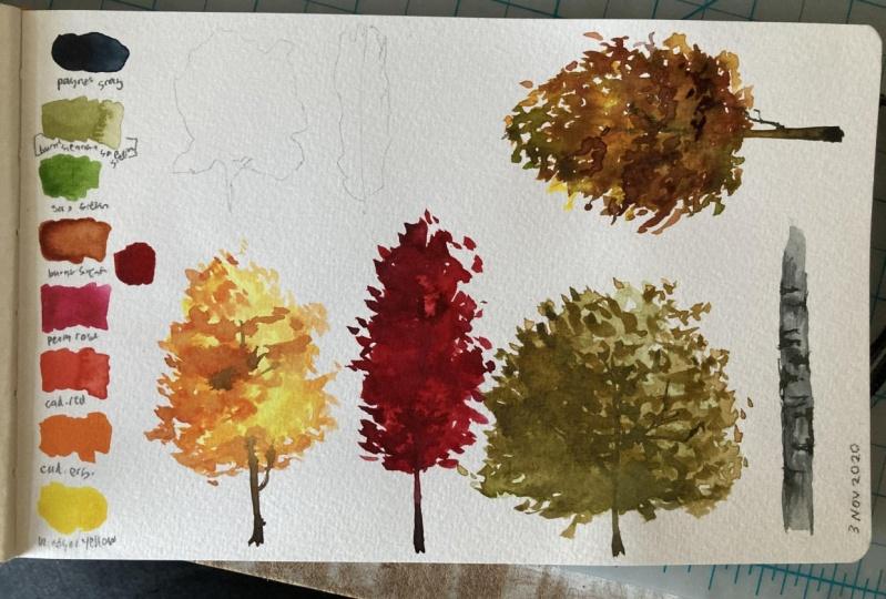 Autumn tree exercises