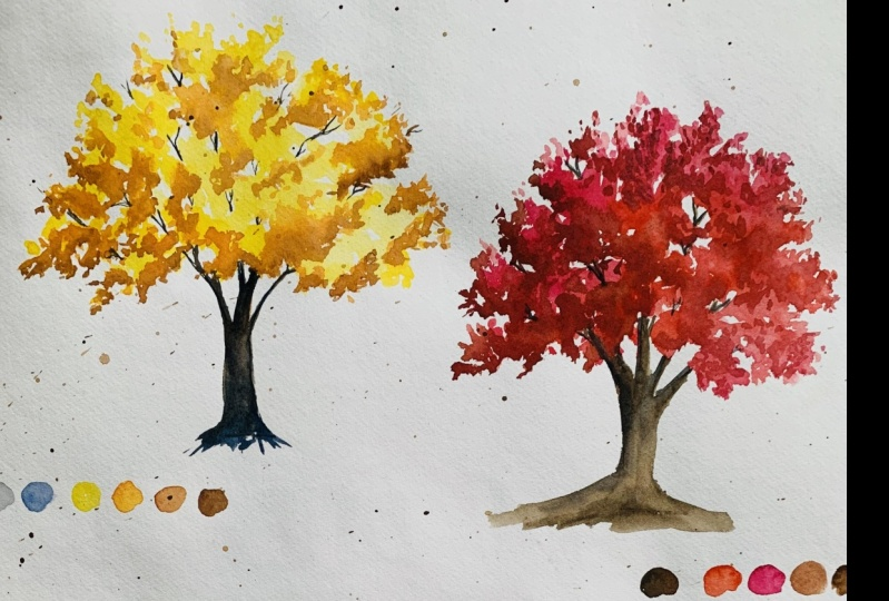 My autumn trees
