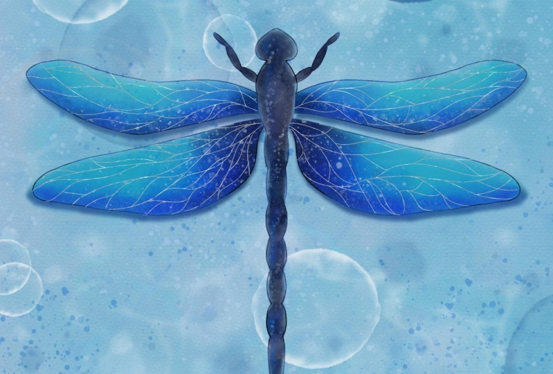 Watercolour dragonfly