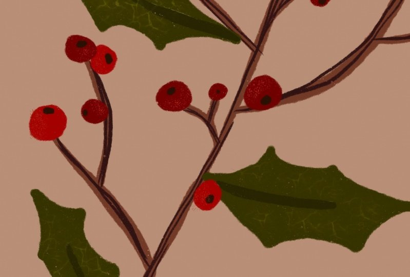 Christmas in procreate