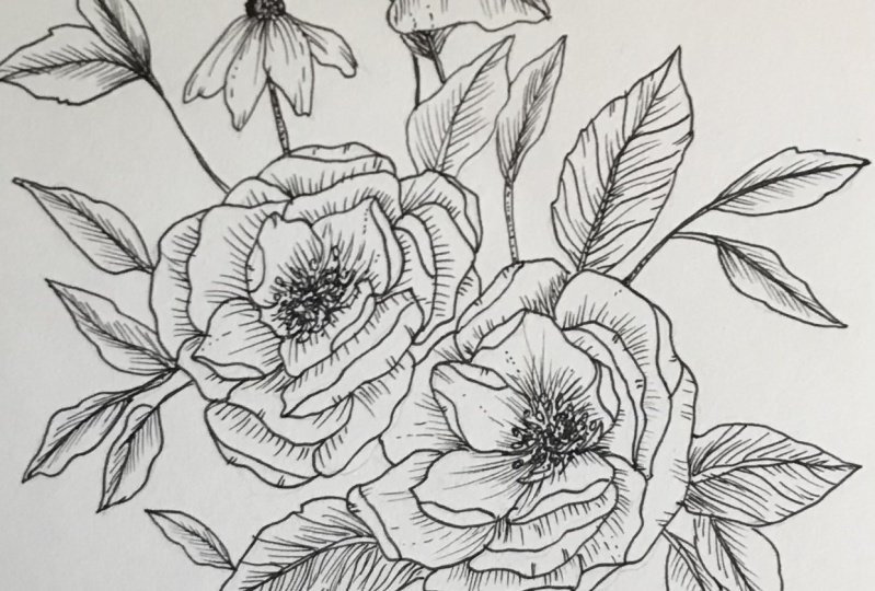 Floral ink drawing