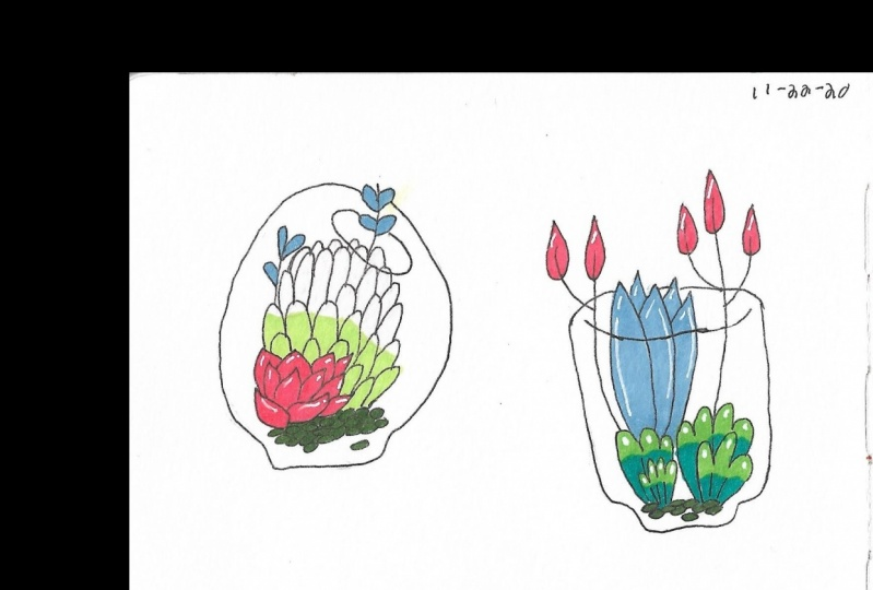 How To Draw Cute Succulent Plants in Terrarium