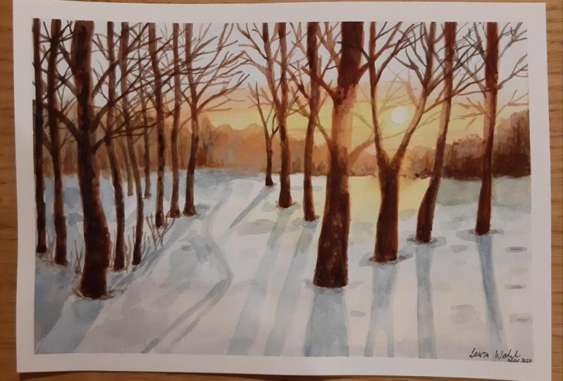 Winter forest sunrise