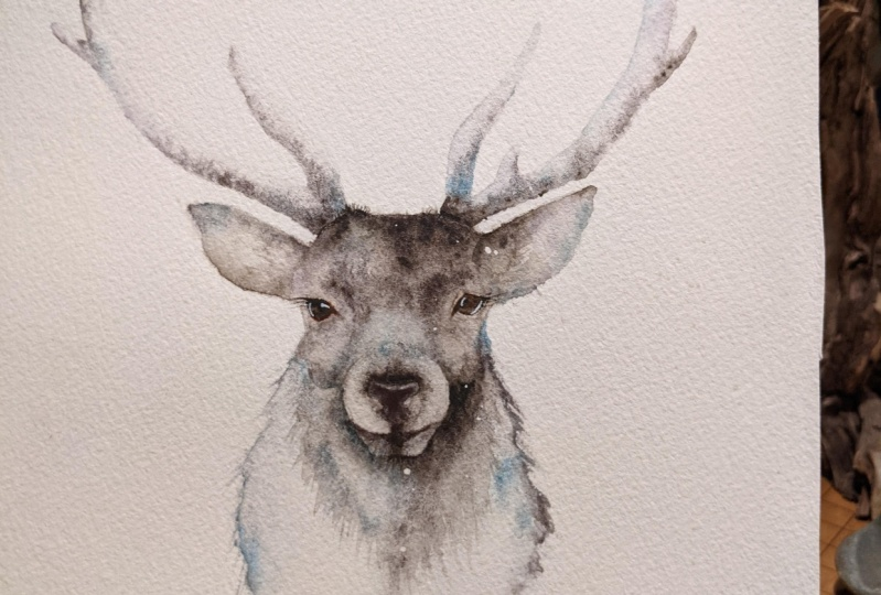 Holiday Stag