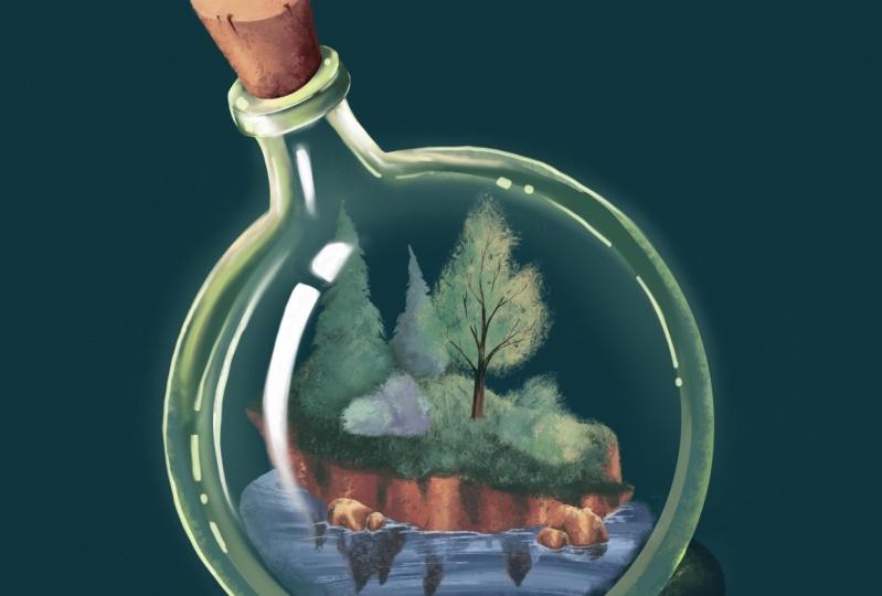 island in a bottle