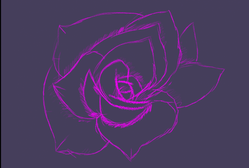 Rose by me