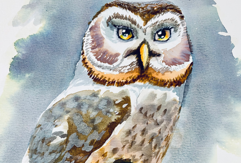 My OwlPainting in INK