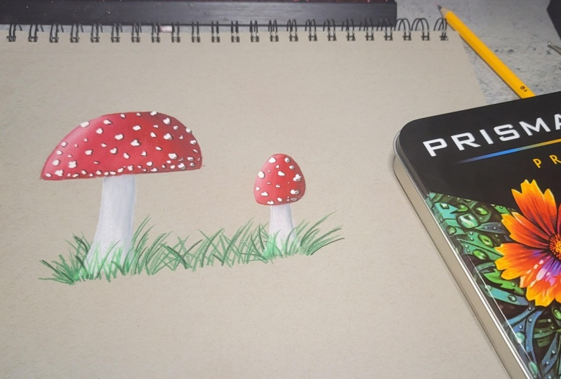 My Try At the Mushrooms