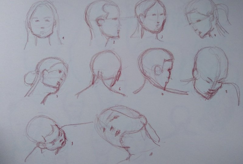 Drawing the head 1