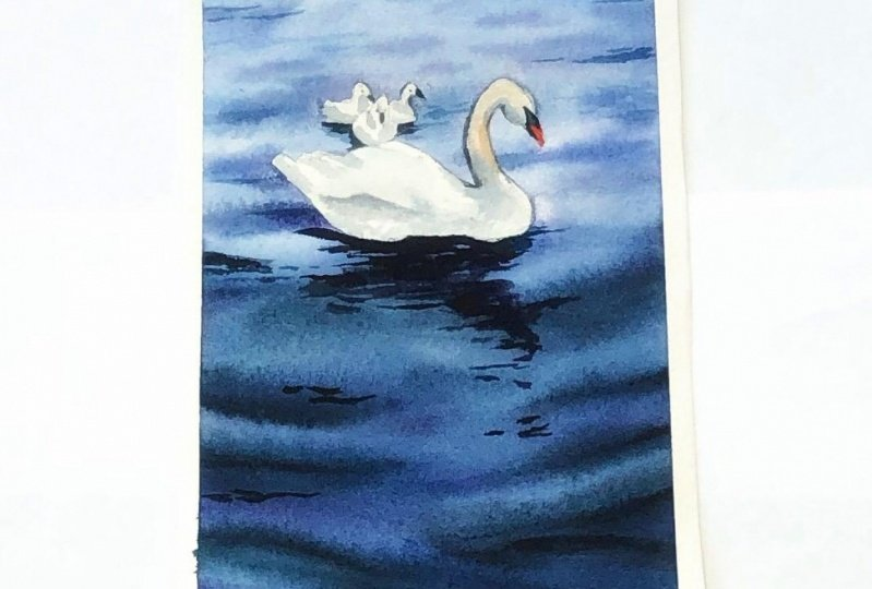 Watercolor swan lake