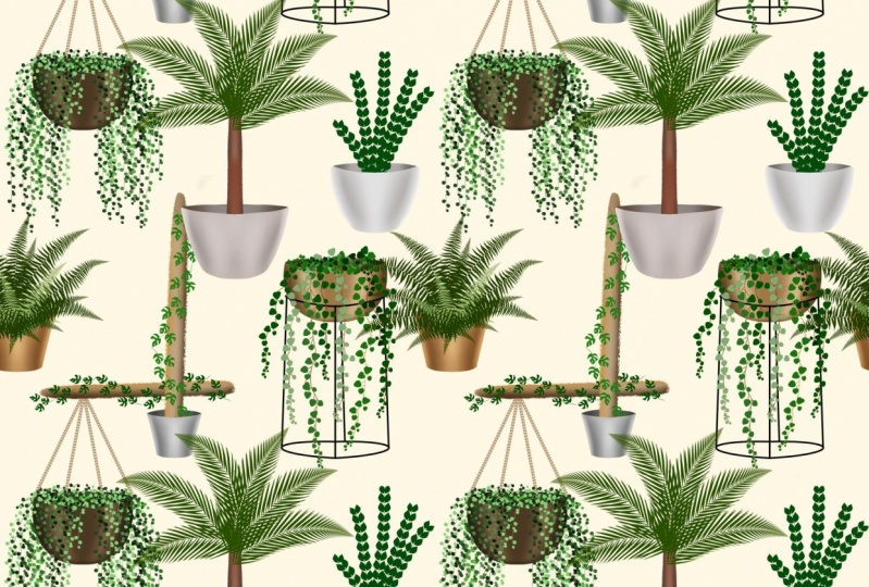 House Plants Seamless Pattern