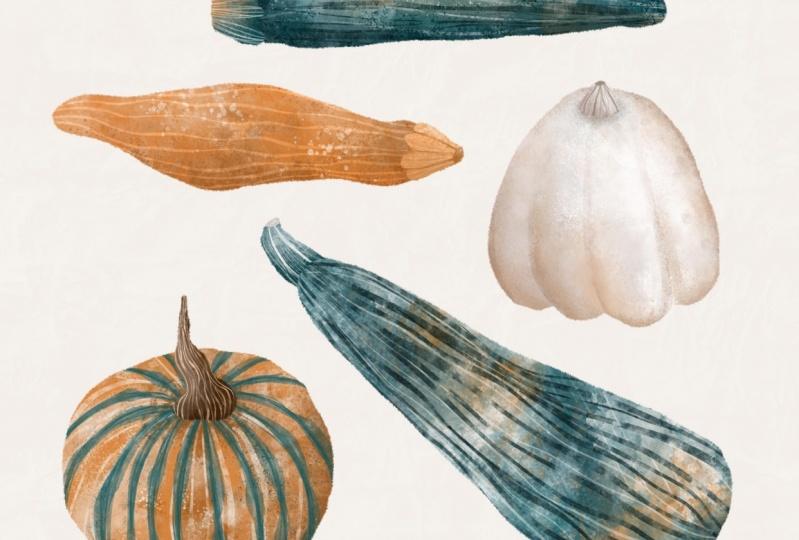Watercolour gourds