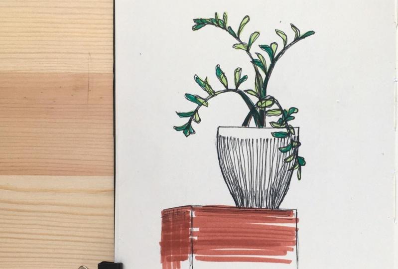 My three sketches