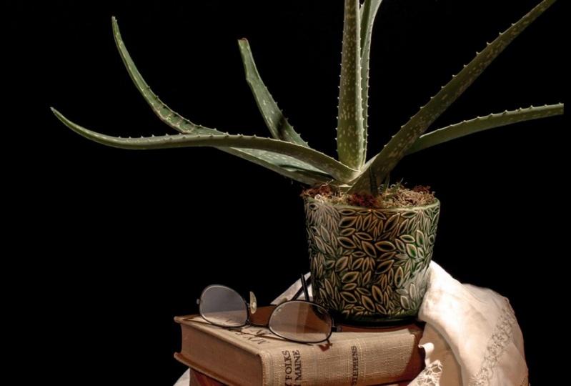 Aloe, et al
