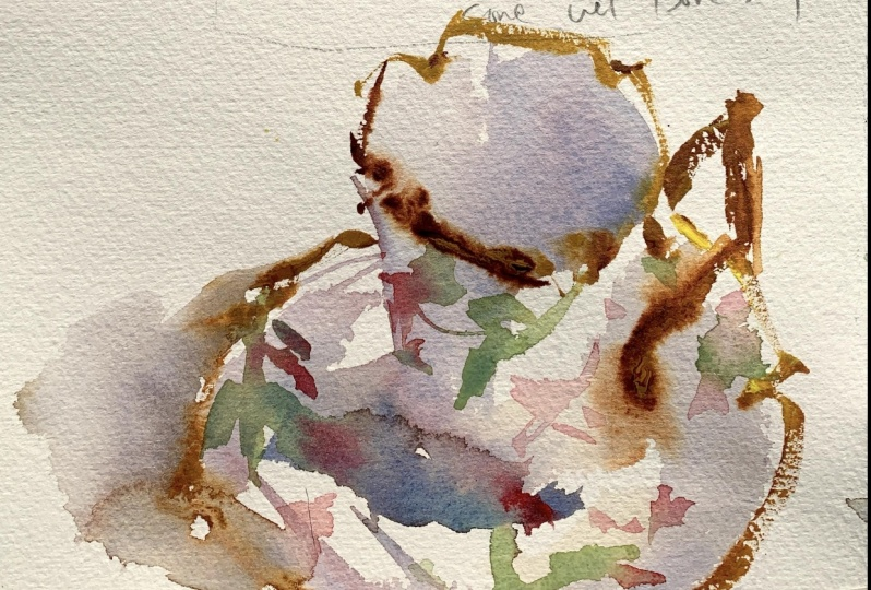 Watercolor Workout Project