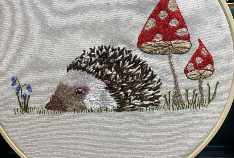Hedgehog and squirrel
