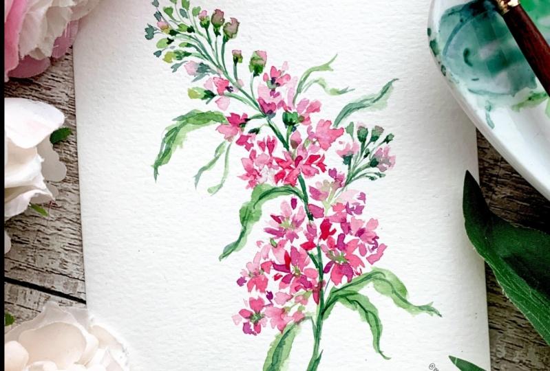 Pretty in Pink Watercolour Freesia