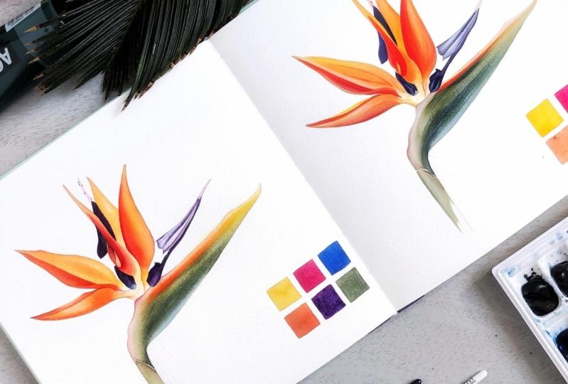 Watercolor vs Acrylic: A Bird of Paradise