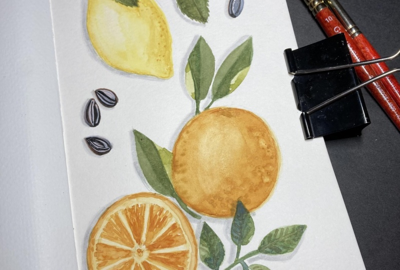 Citrus Flat Lay