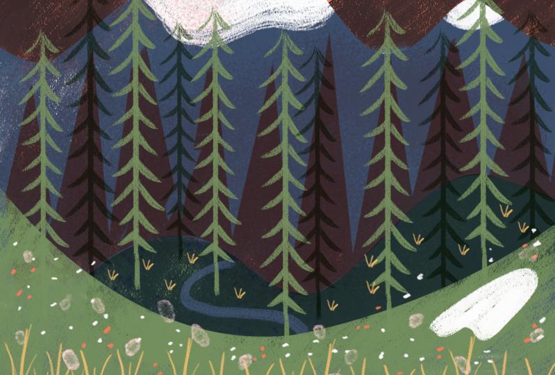 Alpine & Camping