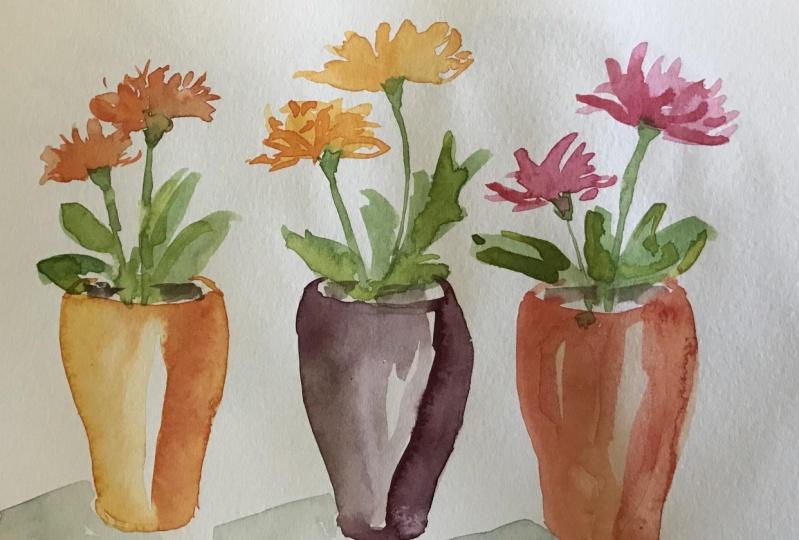 Watercolour potted plants
