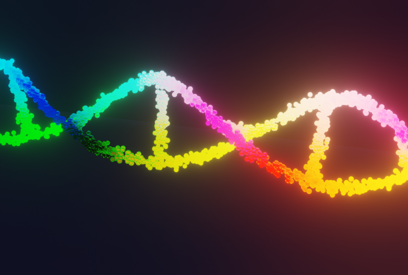 DNA particle system
