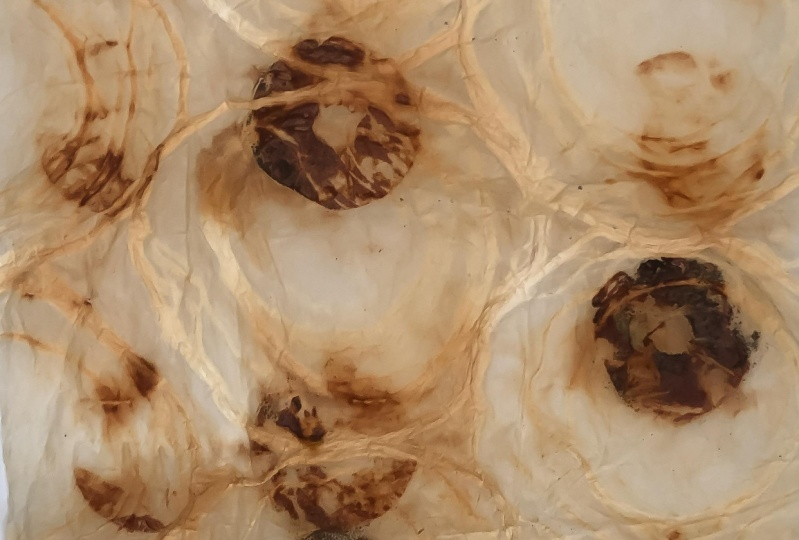 Rust prints
