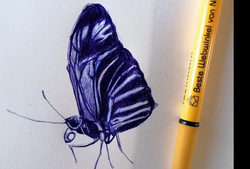 Ballpoint Drawing butterfly