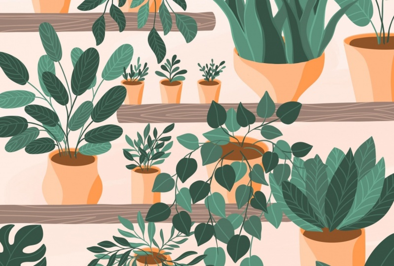 Plant Illustrations in Procreate