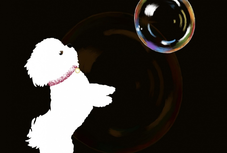 I'm forever chasing bubbles