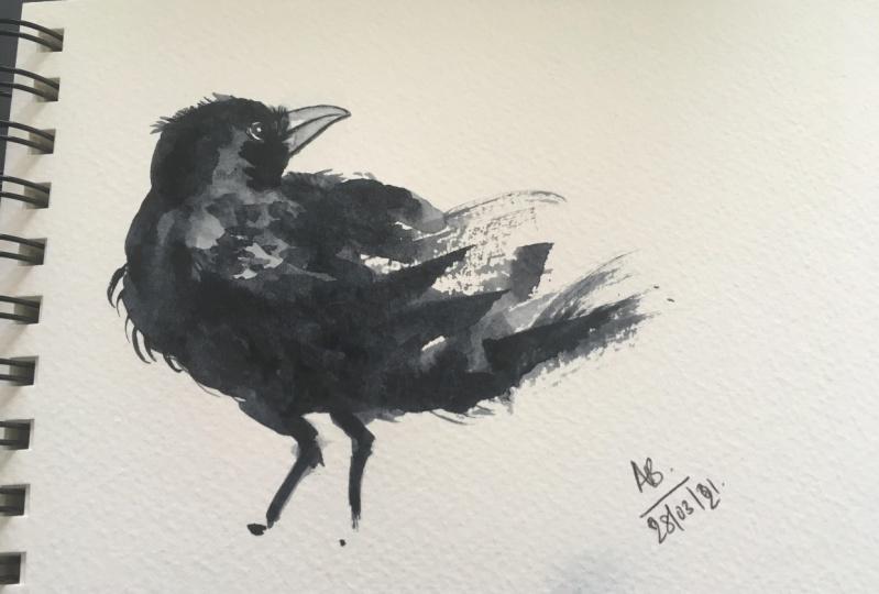 mini Crow