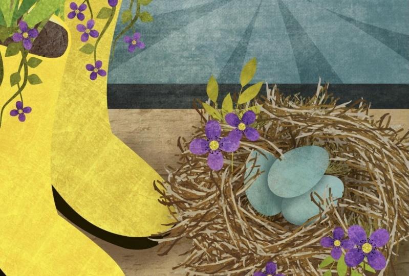 My spring nest