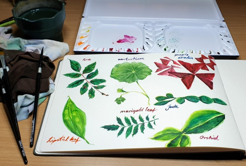 Painting a variety of watercolour leaves