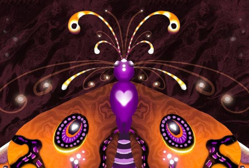 my symmetry moth