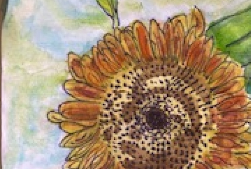 Sunflower Water Colour Painting