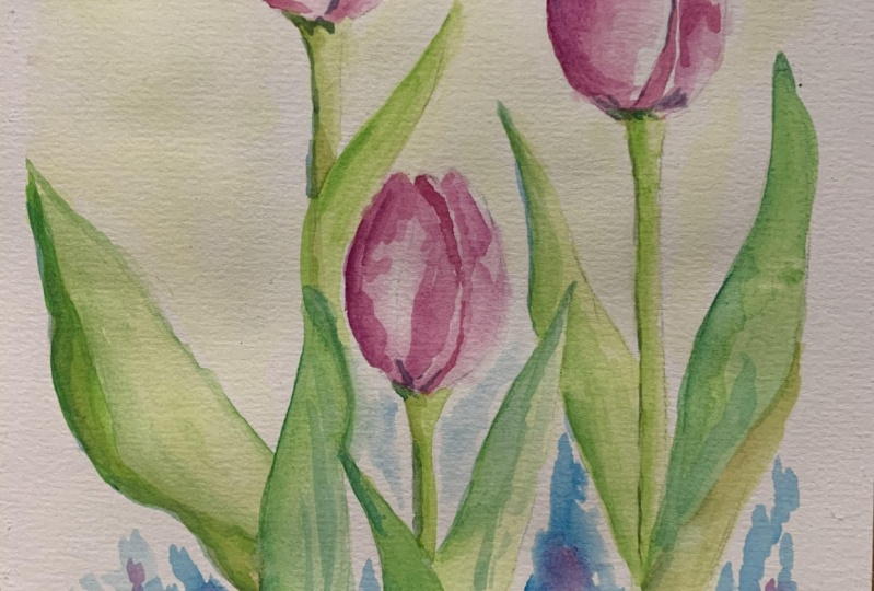 Watercolour Tulips by Two