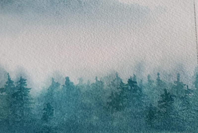 Misty Mountain Trees