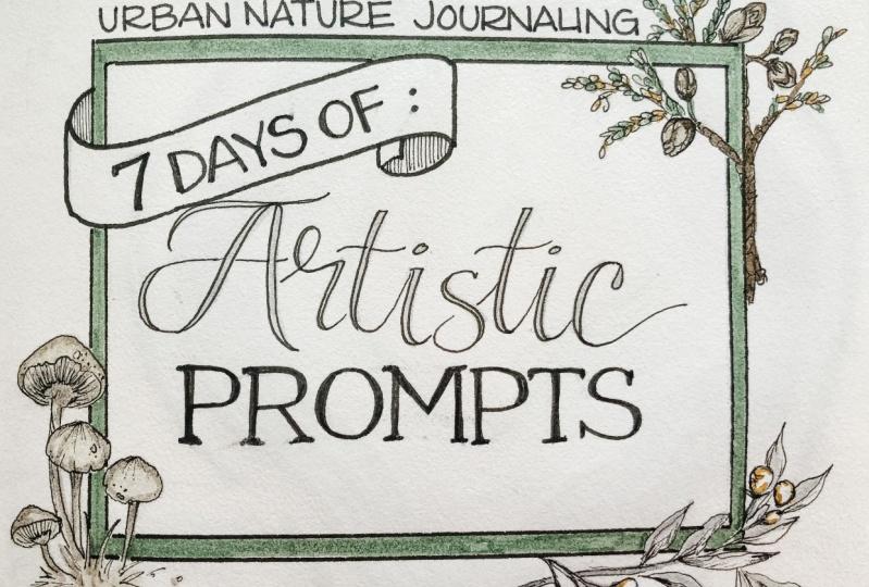 Urban Nature Journaling