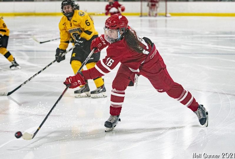 Example Project: Hockey