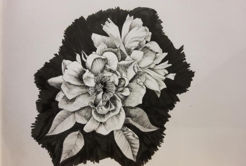 Gardenias - line art