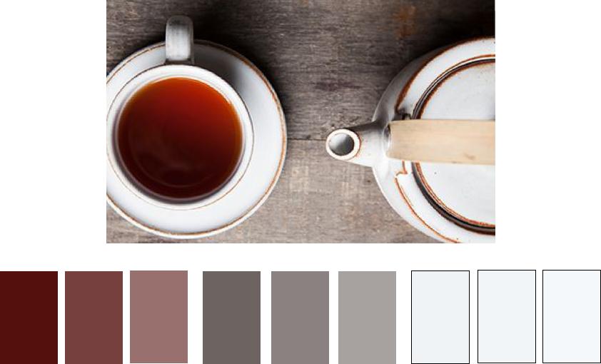 web design bootcamp color palette for online boutique skillshare projects skillshare