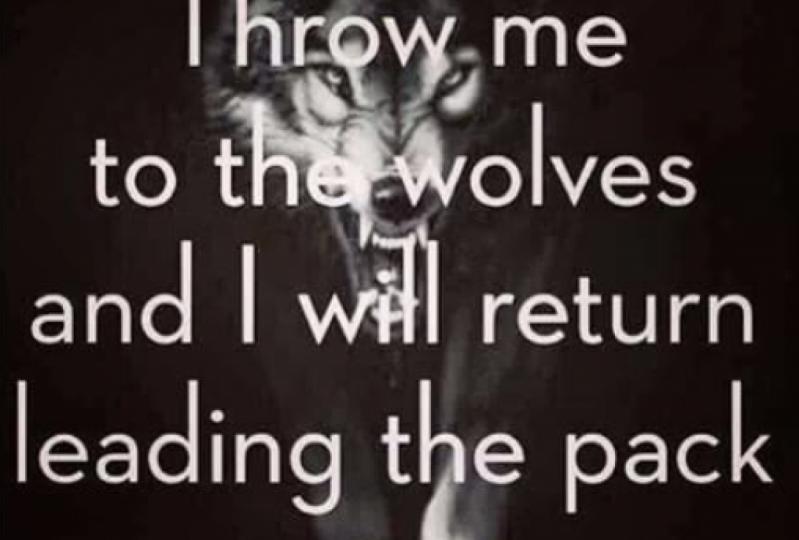 Mr Nagging Wolfie