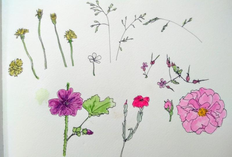 Erste Skizze im Garten