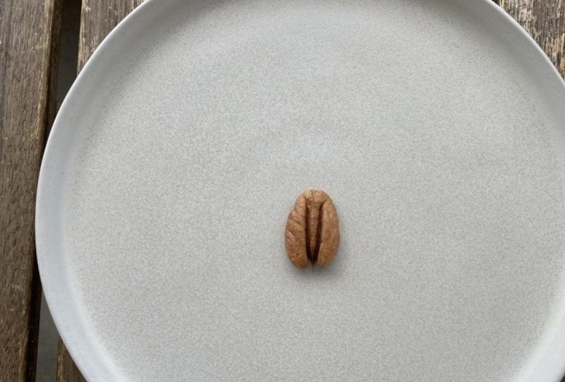 Pecan nut/enlarged reality/ reframing the familiar