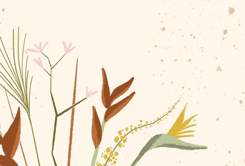 Exotic Wildflowers